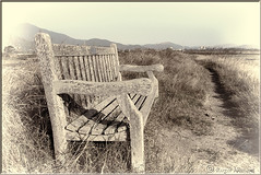 Trail Side Rest Stop (Romair) Tags: bench path trail marincounty photoshopelements mttamalpais weatheredbench cortemaderamarsh rogerjohnson topazbweffects downunderchallenge898