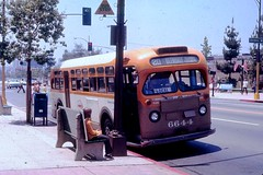 078 RTD Line 20 6644 3rd & Olive Burbank 19711007 AKW (Metro Transportation Library and Archive) Tags: buses scrtd alanweeks southerncaliforniarapidtransitdistrict