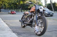 883 (megaand87) Tags: street bike harley motors moto davidson bikers 883 allaperto