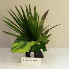 Fumiko leaves #ikebana