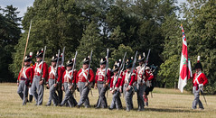 Onward (kimbenson45) Tags: blue red white infantry army grey flag military rifle gray hats rifles marching soldiers historical british uniforms period volley reenactment officer reenactors redcoats skirmish armed livinghistory stride battleprom ranks striding bicentenary battleofwaterloo brownbess canteens thenapoleonicassociation flintlockmuzzleloadingmuskets