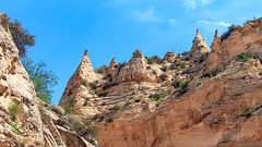 Grand Staircase-Escalante NM - Cootonwoo Narrows (adzamba) Tags: 2016 utah unitedstates usa cottonwoodcanyonrd cottonwoodnaoorws gole grandstaircaseescalantenm gsenm narrows trail