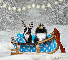 """I  Wanted To Be The King "" ! (rubyblossom.) Tags: mii challenge no2 xmas dog cat basket sled snow trees crown king antlers rudolph nose red rubyblossom rubystreasures 2016"