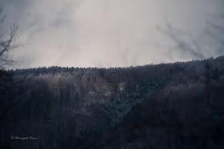 小雪 画像64