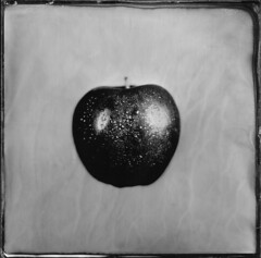 Ceci est une pomme (Tribute to Magritte) ([Eric OLIVIER]) Tags: wetplate collodion humide alternativ process carlzeissjena ambrotype moderncollodion noiretblanc blackandwhite filmisnotdead
