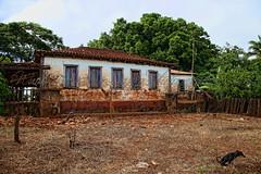 Abandoned Dream , Past Forgotten! (Lázaro A. dos Santos) Tags: casavelhadefazenda farm´soldhouse mylandishere hdr brazil jataígoiás pastforgotten ihaveadream