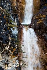 Mountain Adventures (kristaleebaptist) Tags: mountains mountain alberta canada canon nature outside outdoors beauty amazing waterfall wilderness wild winter water trees moss bokeh scenic
