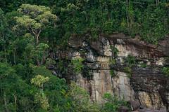 Sea cliffs (Bryn Tassell) Tags: bako bakonationalpark borneo jungle mala malaysia tropical pandan kecil cliff