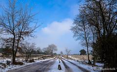 P1180020-5.jpg (loenatik) Tags: assel gelderland kootwijk nature nederland radiokootwijk sneeuw snow tree winter sky