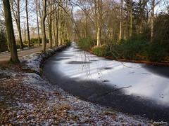 Wintertime (JaapCom) Tags: jaapcom winter wintertime ijsselvliedt ijs wezep gracht snow trees naturel natural dutchnetherlands