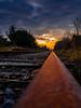 Rusty Rail to the Sun (cogy) Tags: landscape irishrail irish rail railway track rust closed old mullingar westmeath ireland athlone dublin green way route cycle walking line leading cie disused train