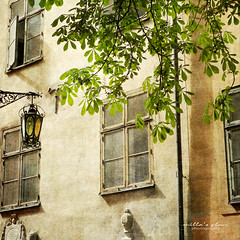 Windows and Leaves (Milla's Place) Tags: windows building tree leaves architecture facade sweden stockholm textures gamlastan lantern oldtown textured chustnut