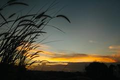 go down.jpg (nisanisarah) Tags: sunset nature balikpapan