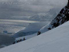 Kris Erickson guiding his group in Antarctica