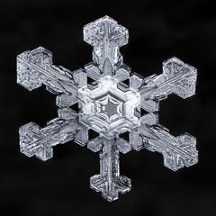 Snowflake-a-Day #33 (Don Komarechka) Tags: snopwflake snow flake fractal ice crystal nature sky winter macro symmetry focusstacking mpe