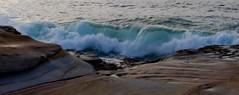 IMG_2846 (salgallaher) Tags: sydney bareisland surf ocean wave
