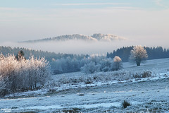 Levitating Hill (martin_king.photo) Tags: levitatinghill hillinthemist mist hill frosty frozen fog winterfrostyland frost winterwonderland winter trees tree frostytrees wonderland vysocina white waves agriculture agricultural welovelandscape athinkingplace thinking place field beautiful beauty curvesofhighlands fields curves landscape shadows wave martin king photo weather clouds cloudyday farming agriculturallandscape nature countryside treestreestrees highlands