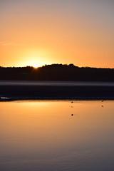 Sunrise over Halton Castle (jonknipe) Tags: sunrise dawn sun halton mersey river runcorn sky