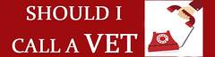 call a vett thumb (steveharrris) Tags: dog vet callavet health pets dogs