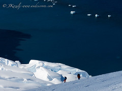 More ski touring antarctica