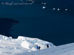 More ski touring antarctica