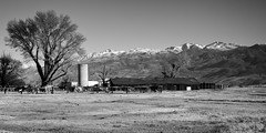 Home on the Range (Charles' Snaps) Tags: bishop bishopca easternsierras sierranevada visitbishop 395north bnwphotography on1pics on1photos canon70200 canon7020028