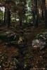 bosque (luisrguez) Tags: es españa spain madrid guadarrama wwwrodriguezymoyanofotografoses