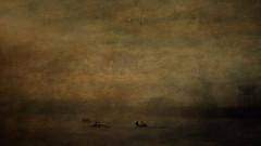 The journey (Pat Kelleher) Tags: riverlee cork patkelleherphotography texture