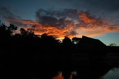 IMG_9942 - Sunset at Tahuayo Lodge, Loreto, Peru (Wayne W G) Tags: sunset red sky orange peru southamerica river amazon rainforest sunsets rivers oranges reds loreto fiery rainforests tahuayo