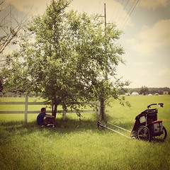 Spot of shade in Shallotte, NC. Brutal walking today, hot and no shoulder means I have to pull the cart on grass. Chipping away a mile or two at a time. #TheWorldWalk #travel #thule #tough #nc #farm #twwphotos