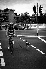 (pghaemi) Tags: dog girl bicycle streetphotography