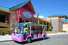 LuLu's Gumbo Love Tram 2015-1