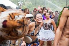 EFF2015_by_spygel_0100 (spygel) Tags: earthfrequencyfestival doof psytrance dubstep aussiebushdoof loose festival