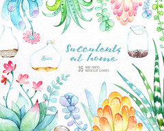Succulents at Home. 35 floral Elements and Jars. Hand painted watercolor flowers, wedding diy elements, flowers, invite, jars clipart (octopusartis) Tags: flowers wedding floral digital watercolor scrapbooking diy frames succulent mint invitation elements clipart watercolour suite invite jars