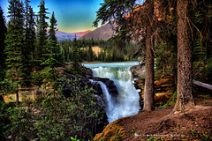 ATHABASCA FALLS (Aspenbreeze) Tags: trees canada nature rural river landscape waterfall country falls waterfalls alberta albertacanada athabascafalls waterscape canadianscenery aspenbreeze moonandbackphotography bevzuerlein