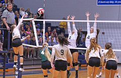 IMG_8116 (SJH Foto) Tags: girls volleyball high school york delone catholic team teen teenager net battle spike block action shot jump midair