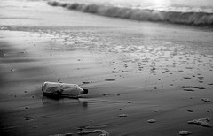 * (Johuhe) Tags: bottle message beach beached shore ashore sea ocean coast black whote monochrome analog film kodak tmax xtol leica m2 summicron epson v500 katwijk netherlands holland