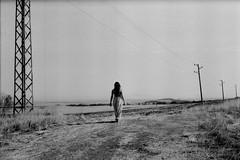 The Path (Iliyan Yankov) Tags: 365 bw film 35mm fomapan ishootfilm thefilmisnotdead buyfilmnotmegapixels analogue analoguelove photography blackandwhite monochrome