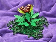 Carnivorous Plant (Jonas Wide ('Gideon')) Tags: lego plant carnivorous goh monster nocturnus