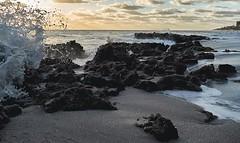A6500 Fast Exposure (fdean55) Tags: sonya6500m zeiss1635 iso800 f4 4000secsonyalphavanguardworldcaptureoneocean coral cove florida sunrise fastexposure sony a6500 vanguardveo captureone