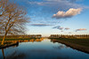 Late Sunlight View (Alfred Grupstra) Tags: lake meadow reflection trees water oostwoud noordholland nederland nl
