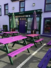 O'DONOGHUE'S (Églantine) Tags: purple pink pub ireland travel colors colours couleurs violet rose odonoghues odonoghuespub charming upbeat color