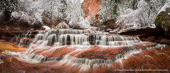 Archangel in Snow (David Swindler (ActionPhotoTours.com)) Tags: archangelfalls leftforknorthcreek snow thesubway winter zion zionnationalpark waterfall