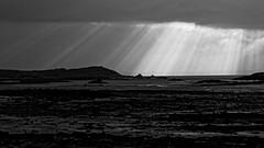 Sunset (Joseph Trojani) Tags: bretagne mer sea marée ciel sky nuage cloud paysage landscape nikon d7000 manche cotedarmor rayons rayondusoleil sunshine light lumière ilegrande enezveur brittany britain