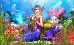 MerQueen (meriluu17) Tags: mermaid biteclaw tfgc fgc thefantasygachacarnival undersea underwater fantasy kraken jellyfish bubbles coral corals seaplants blue water portrait people magical magic surreal scales tail