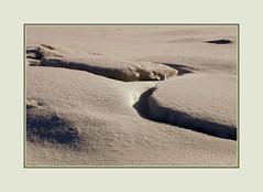Life through the Dark Glasses (Sergei P. Zubkov) Tags: snow ice sea february