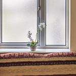 A Window Idyll thumbnail