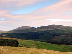 "Rhobell Fawr and Dduallt • <a style=""font-size:0.8em;"" href=""http://www.flickr.com/photos/41849531@N04/19159822368/"" target=""_blank"">View on Flickr</a>"