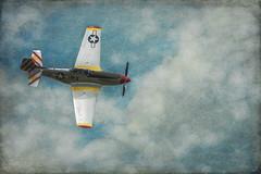 Mustang P-51 (lornahamblin) Tags: