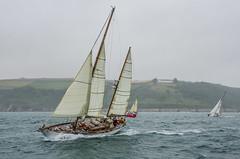 13th July start of Passage race to Paimpol (Matchman Devon) Tags: classic race regatta passage dartmouth channel paimpol